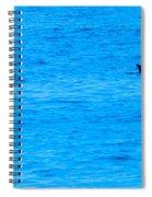 Friend Or Foe Spiral Notebook