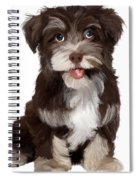 Friendly Dog Spiral Notebook
