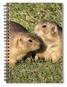 Friendly Prairie Dogs Spiral Notebook