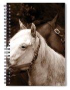 Friends - Sepia Spiral Notebook