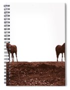 Friends-1 Spiral Notebook