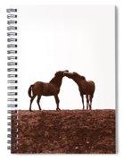 Friends-2 Spiral Notebook
