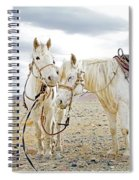 Friends And Companions  Spiral Notebook