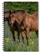 Friends In The Bluebonnets Spiral Notebook