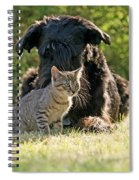 Friendships In The Animal World Is Possible Spiral Notebook