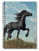 Friesian Spiral Notebook