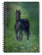 Friesian Mist Spiral Notebook