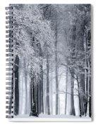 Frigid Forest Spiral Notebook