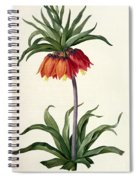 Fritillaria Imperialis Spiral Notebook