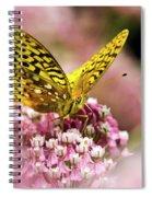 Fritillary Butterfly On Flowers Spiral Notebook