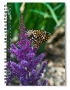 Fritllary Butterfly On Astilbe Spiral Notebook