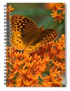 Frittalary And Milkweed Spiral Notebook