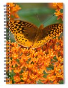 Frittalary Spiral Notebook