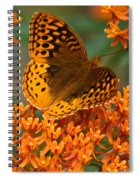 Frittalary Milkweed And Life Spiral Notebook