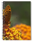 Frittalary On The Prowl Spiral Notebook