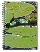 Frog Amongst The Lilypads Spiral Notebook