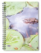 Frog And Lily Pads Spiral Notebook