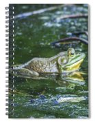 Frog In A Pond Spiral Notebook