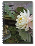 Frog In Awe Of White Water Lily Spiral Notebook