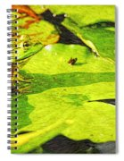 Frog On Lily Pad Spiral Notebook