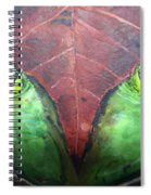 Frog With Leaf Spiral Notebook