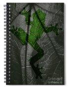 Explorer  Spiral Notebook