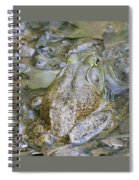 Frogs Eye View Spiral Notebook