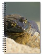 Frogzilla Spiral Notebook