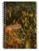 Frolic Spiral Notebook