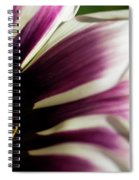 From Crimson To White Spiral Notebook