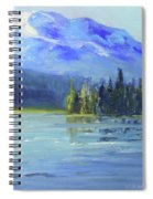 From Sparks Lake Spiral Notebook