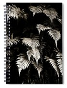 Fronds Spiral Notebook