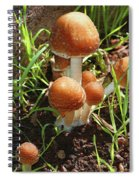 Front Pourch Mushroom Family Spiral Notebook