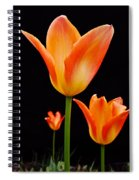 Front Runner Spiral Notebook