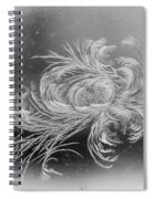 Frost 2 Spiral Notebook