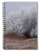 Frost And Fog Spiral Notebook
