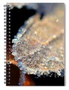 Frost Diamonds Spiral Notebook