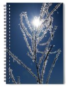 Frost Ice Crystals Spiral Notebook