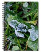 Frost Spiral Notebook