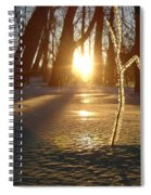 Frost On Sapling At Sunrise Spiral Notebook