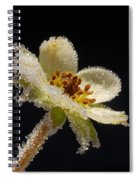 Frost On The Flower Spiral Notebook