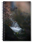 Frost Web Spiral Notebook