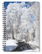 Frosted Cottonwoods Spiral Notebook
