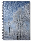 Frosted Hilltop Quakies Spiral Notebook