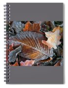 Frosted Painted Leaves Spiral Notebook