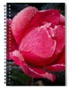 Frosted Rose Spiral Notebook
