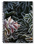 Frosted Tips Spiral Notebook