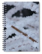 Frosted Twigs Spiral Notebook
