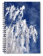Frosted Weeping Willow Spiral Notebook
