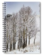 Frosty Aspen Trees Spiral Notebook